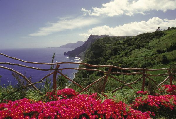 Madeira: The Original Island of Wellness