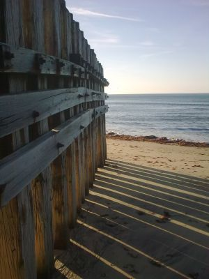 Groynes looking out to sea